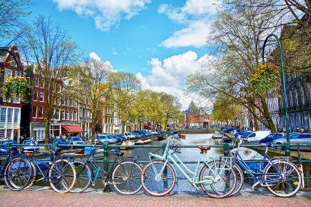 culturewaves geschaeftsreisen in die niederlande