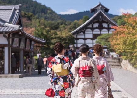 culturewaves japan verstehen lernen